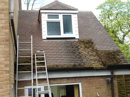 MKH Roof Revival safe thorough moss removal